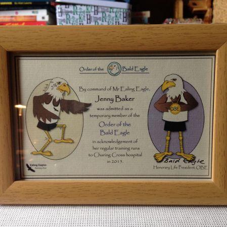 order of bald eagle