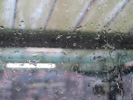 rainy-window